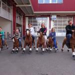 Pferderennen Spiel mieten