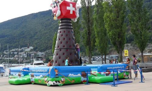 Grimpeurs suisses